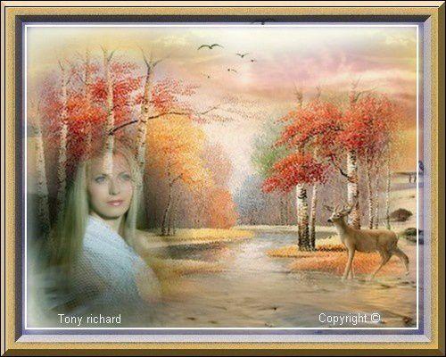 REFLETS D'AUTOMNE PAR TONY RICHARD ET CAPUCINE LE 25 NOVEMBRE 2012 / LES PENSÉES ENLACÉES - LA POÉSIE EN DUO - LA POÉSIE DANS LE COEUR
