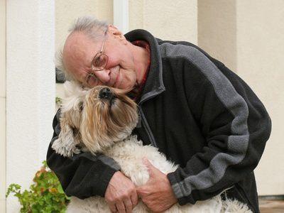 Le plaque off, une solution efficace pour les gencives de mon chien !