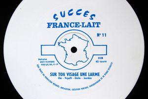 Succès France-Lait - flexi publicitaire 45t  15,5cm - N° 11 - Sur ton visage, une larme