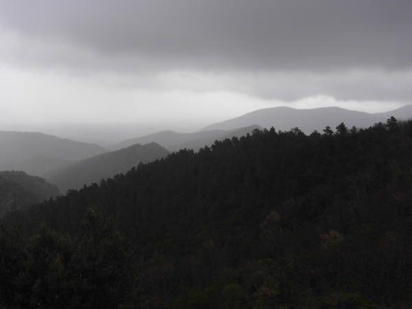 Découvrez les paysages variés du massif des Maures, à toutes les saisons. La Nature nous offre ici, de splendides décors où se mêlent des châtaigniers séculaires, des collines sous la pluie, des plaines ressemblant à des déserts....
