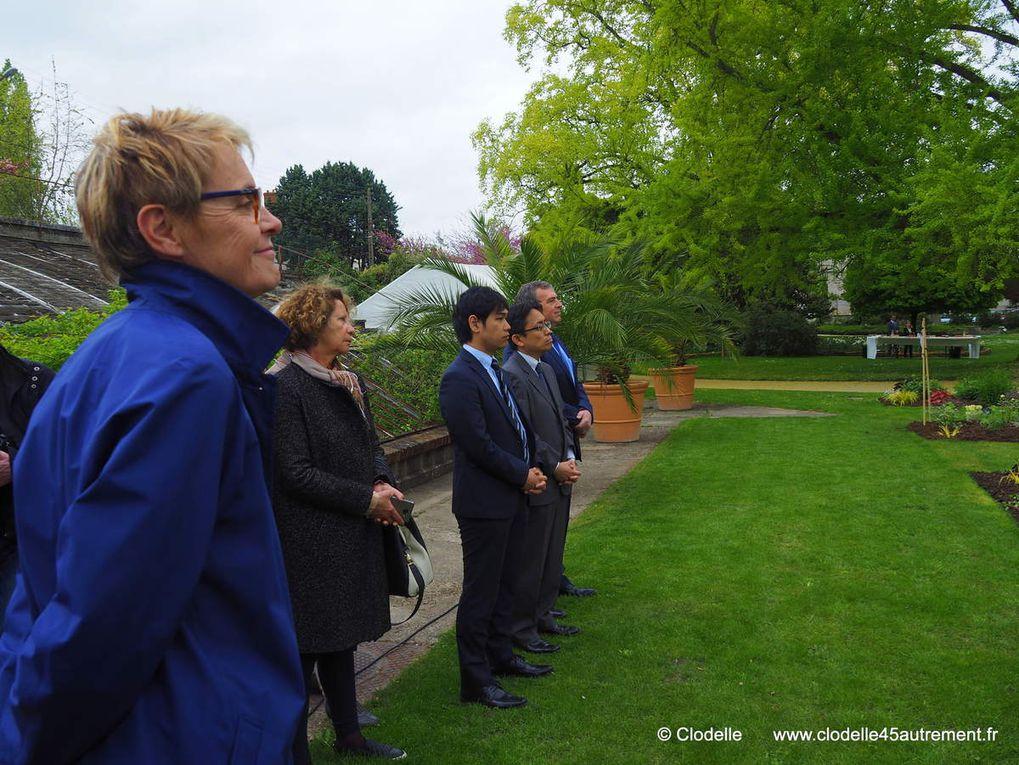 Visite du nouvel espace PIVOINES DU JAPON au JARDIN DES PLANTES D' ORLEANS