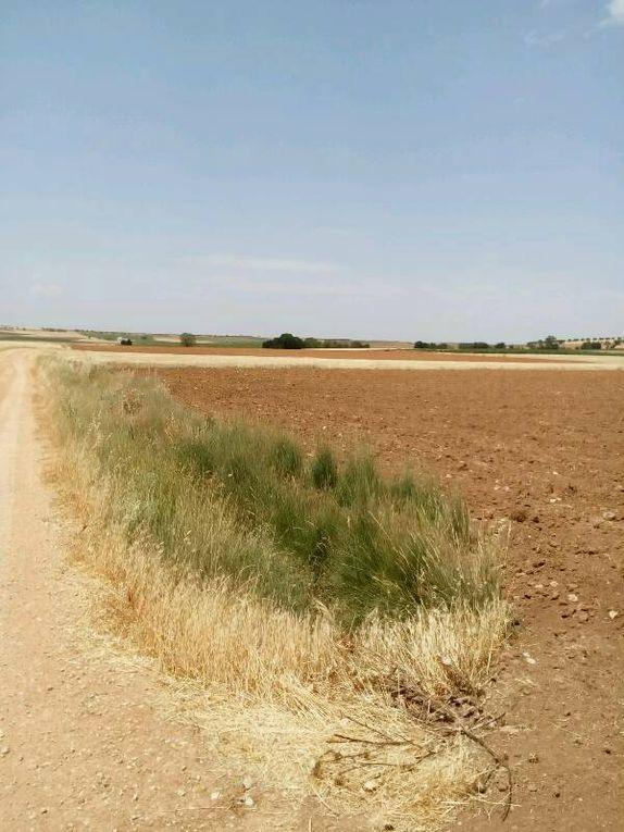Beauté des paysages : voilà ce que devrait être un monde beau et juste dans ses différences.