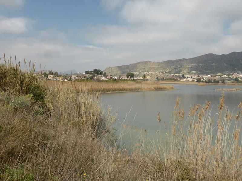 Blanca et la vallée de Ricote