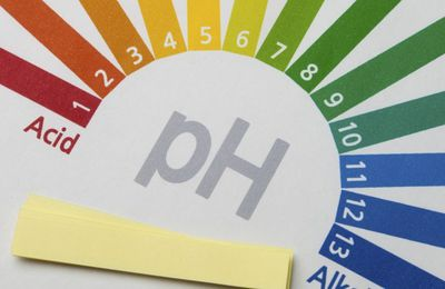 Le pH (Partie 1) - Pourquoi le pH remonte ?