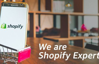 Shopify Developers and Business Owners