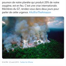 Forêts, climat, etc. – trois réponses à Atlantico