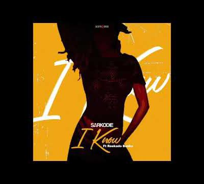 Sarkodie - I Know ft. Reekado Banks (Audio Slide)