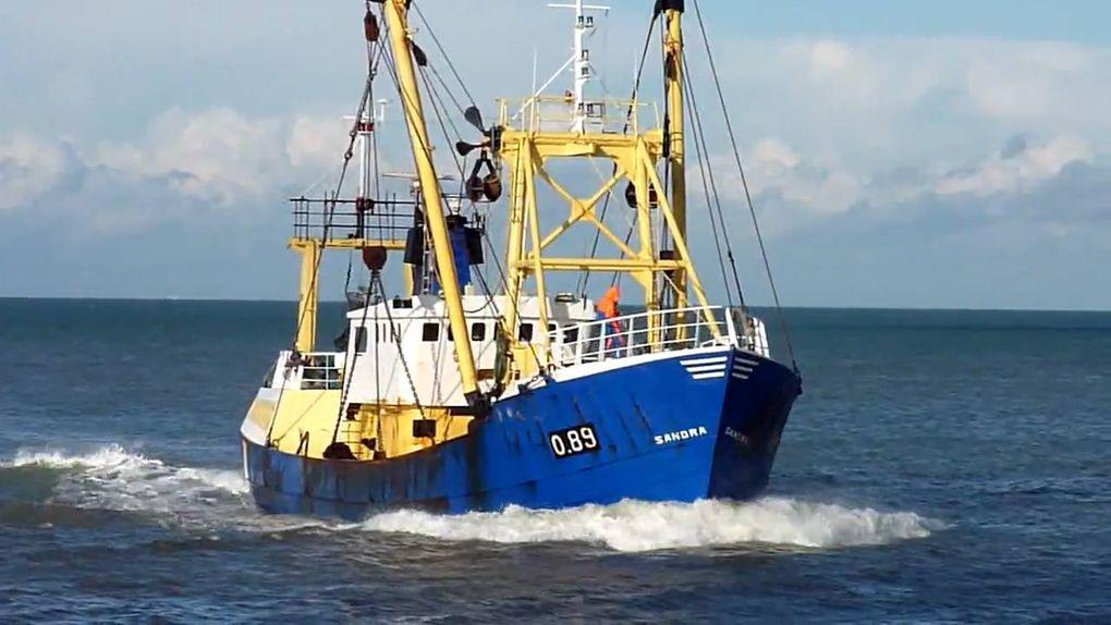 Prolongation des autorisations pour les pêcheurs français à Jersey et Guernesey