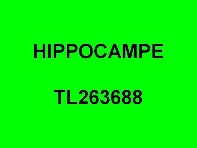 HIPPOCAMPE  , TL263688