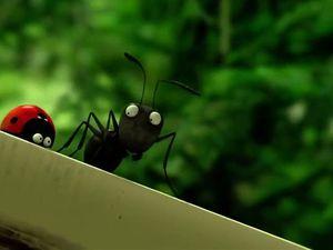 [Le gouffre de Helm à petite échelle] Minuscule : La vallée des fourmis perdues