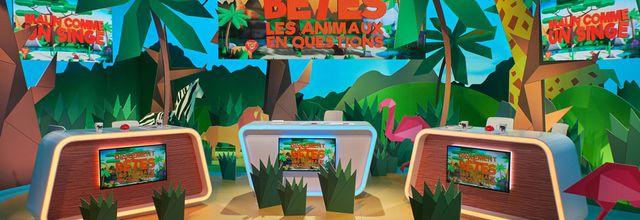 """Le jeu """"Drôlement bêtes, les animaux en questions"""" de retour le 18 février avec des nouveautés sur France 4"""