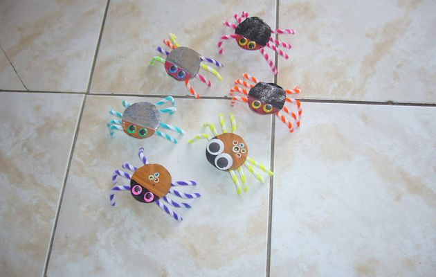 Nos araignées clownesques !!!