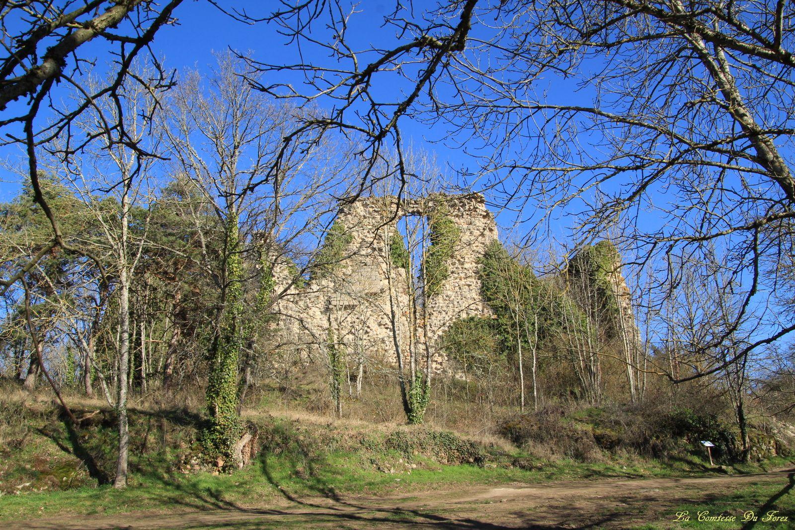 Château de Salt-en-Donzy (42110, Loire)