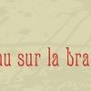 Bloganniversaire : Un Oiseau sur la branche (Cadeau inside)
