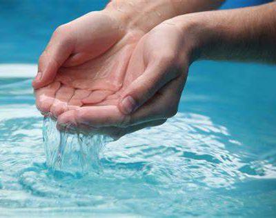 """""""L'auxiliaire de l'apostolat"""" : une vocation qui me ramène à mon baptême"""