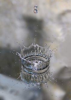 L'eau de Quinton