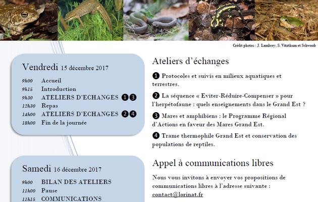Appel à communications pour la troisième édition des rencontres herpétologiques Grand-Est