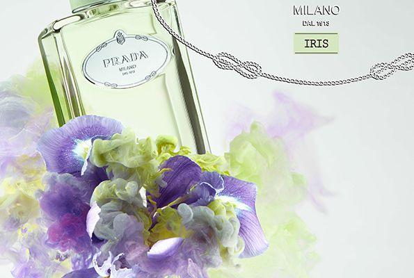 Les infusions de PRADA - Iris