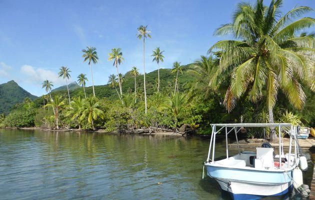 RAIATEA au coeur d'un petit WE tranquille sur l'île sacrée...
