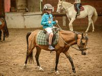 Stage Initiation à l'Equitation (01-05 Août)