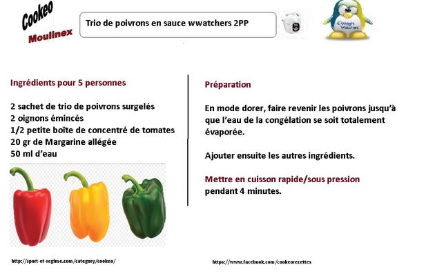 10 fiches recettes weight watchers au cookeo