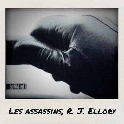 Les assassins, R. J. Ellory
