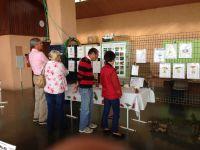 L'expo champignons 2014, ce matin