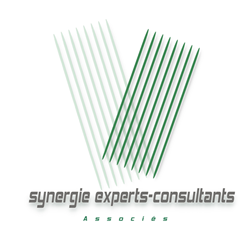 Synergie Expert Comptable
