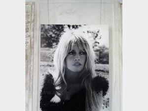 Brigitte Bardot, star libérée