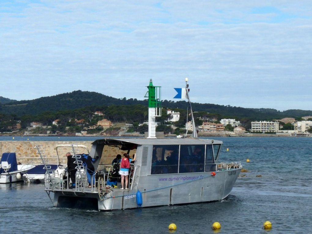 CARIBOU , navire d'une école de plongée
