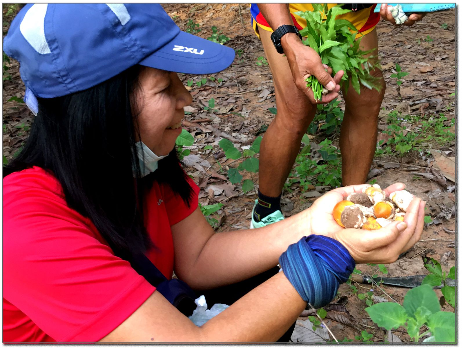 Cueillette de champignons (Thaïlande)