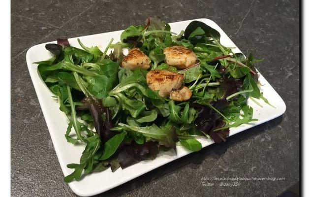 Salade mélangée aux noix de Saint-Jacques marinées aux citron vert
