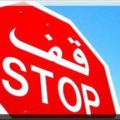 Les attentats suicides dans la balance de la loi islamique (vidéo) - العلم الشرعي - La science légiférée