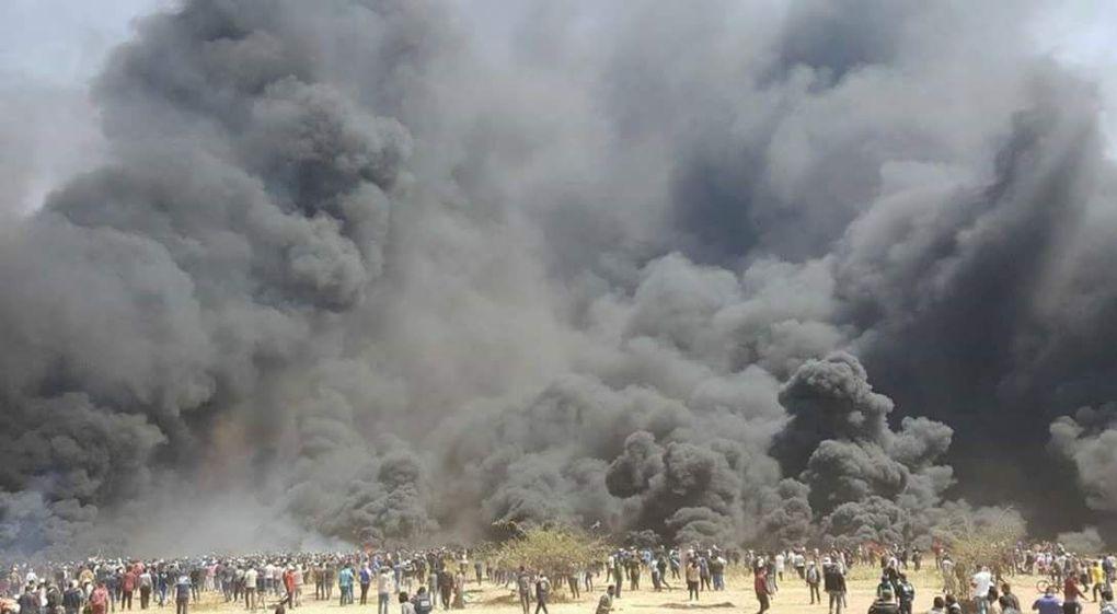 Des milliers de pneux amassés le long de la barrière frontalière ont été brûlés par les Arabes de Gaza (+ de 10 000) que cela brûle les champs voisins et que l'épaisse fumée toxique cause un grand désastre écologique y compris pour les Palestiniens, le Hamas s'en fiche !        Dernière mise à jour 10/4/18 16h55