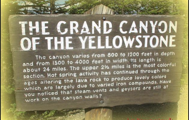 Yellowstone National Park  ...Le Grand Canyon ..