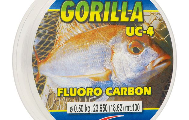 Fluorocarbone ou nylon : le point sur la question