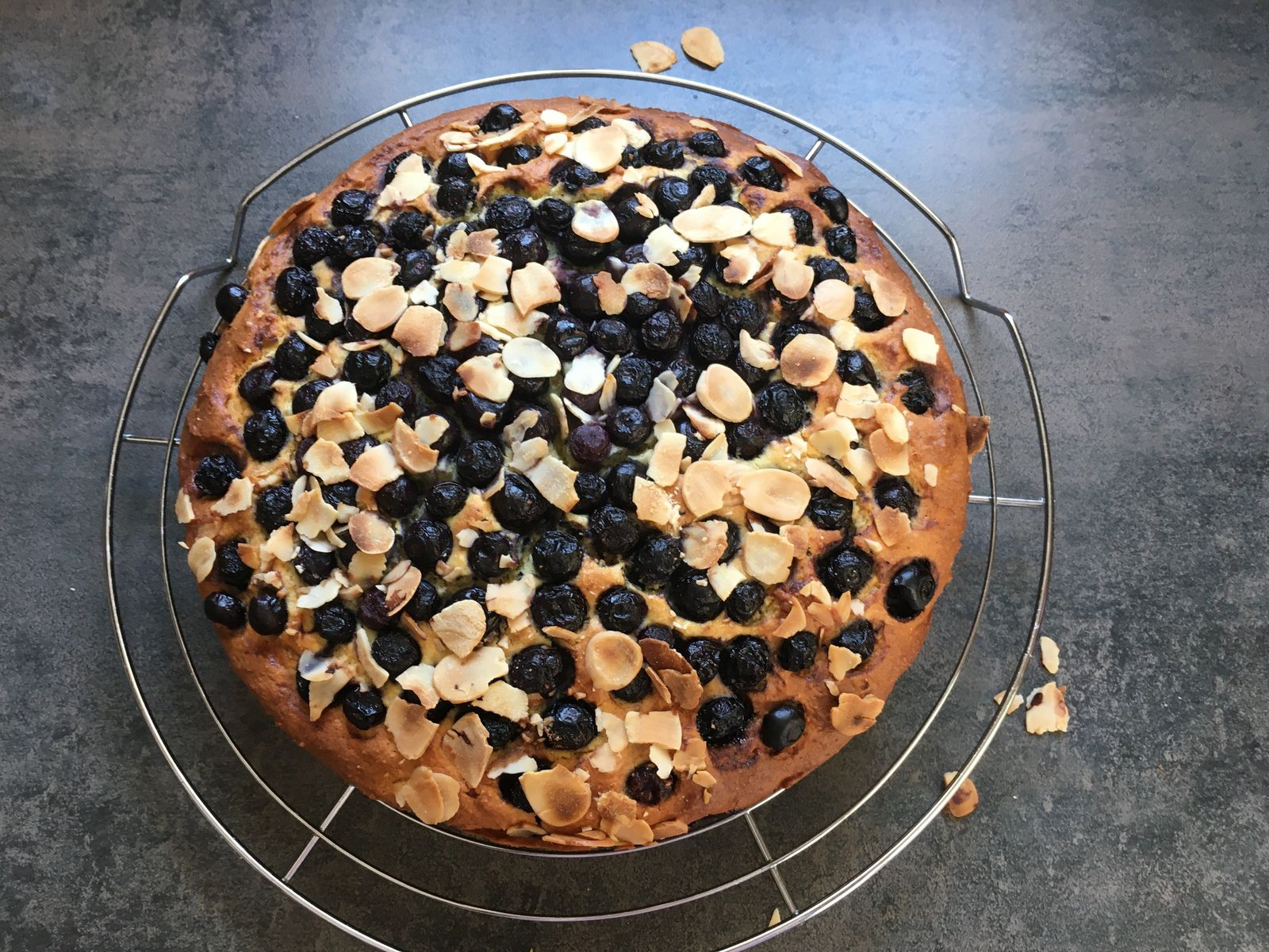 Gâteau hum... si moelleux, aux myrtilles et à la ricotta