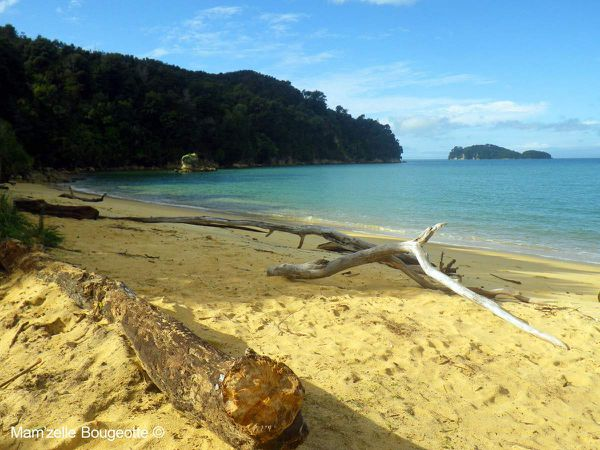 Le sublime parc national d'Abel Tasman
