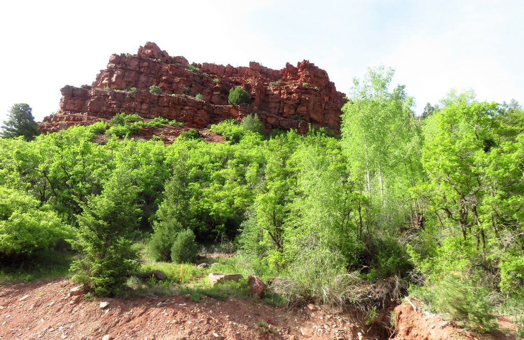 Jour 9 - CORTEZ => MONTROSE - Canyons of the Ancients - Telluride