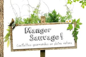 Manger Sauvage !