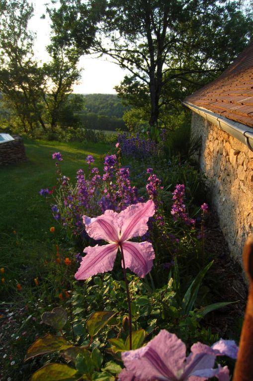 Album - Derrière la porte du jardin...