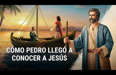 Reflexiones bíblicas: ¿Por qué Jesucristo aprobó la fe de Pedro?
