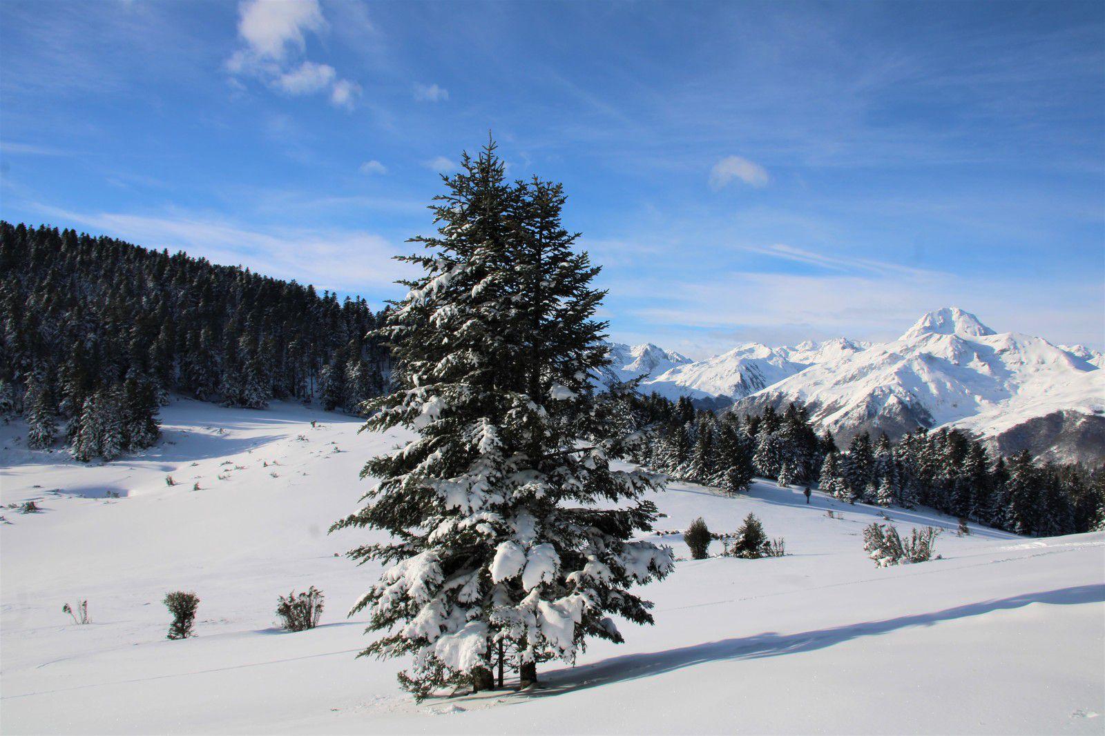 Vers le pic du Midi de Bigorre.