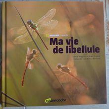 """""""Ma vie de libellule"""" de Daniel Magnin et Alain Cugno..."""