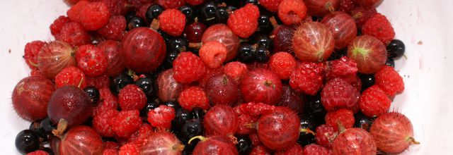 COUPE VANILLEE AUX FRUITS ROUGES