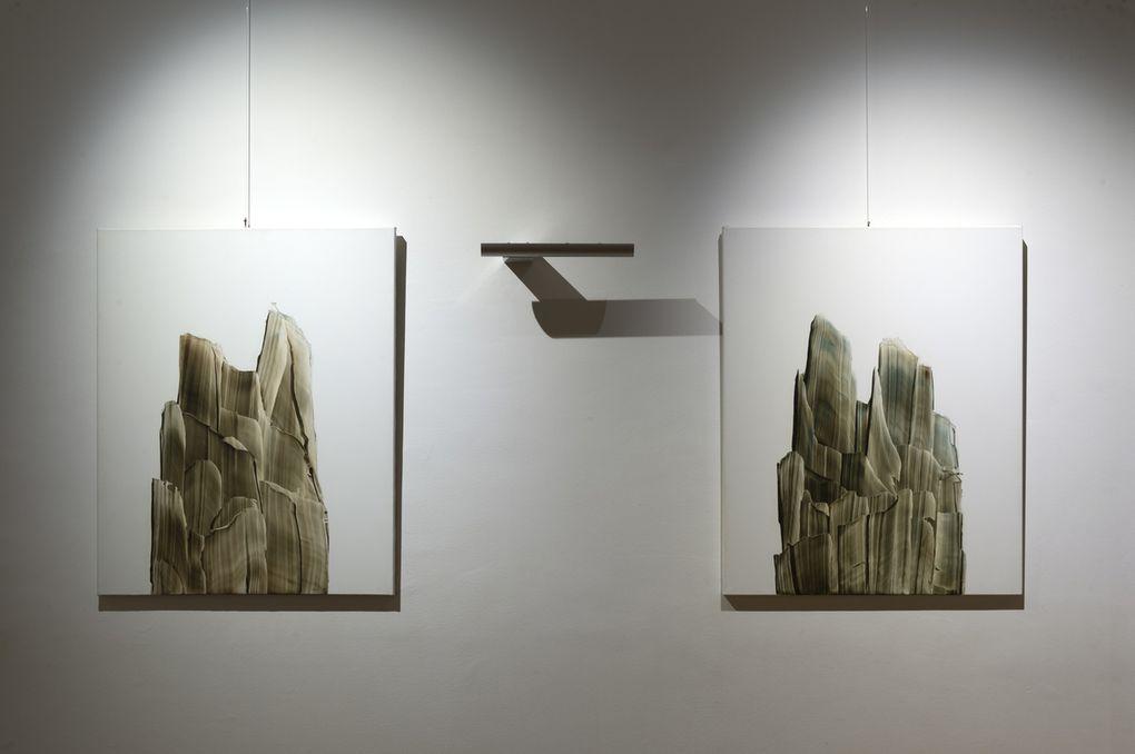 """Exposition """"La forêt est silence, respirez"""" Musée de Bibracte août 2019 - visuels : Bibracte"""