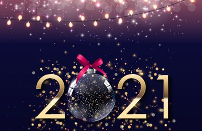 CELEBRATE NEW YEAR 2021 WITH THESE EXCOTIC HOTELS IN MANALI!!