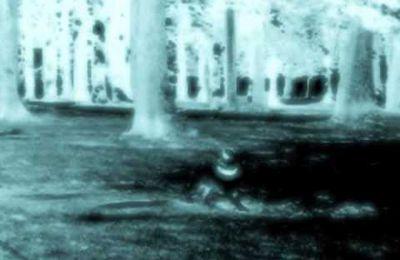 Emmanuel Holterbach - Deux mouvements dans l'éther (nouvelle vidéo)