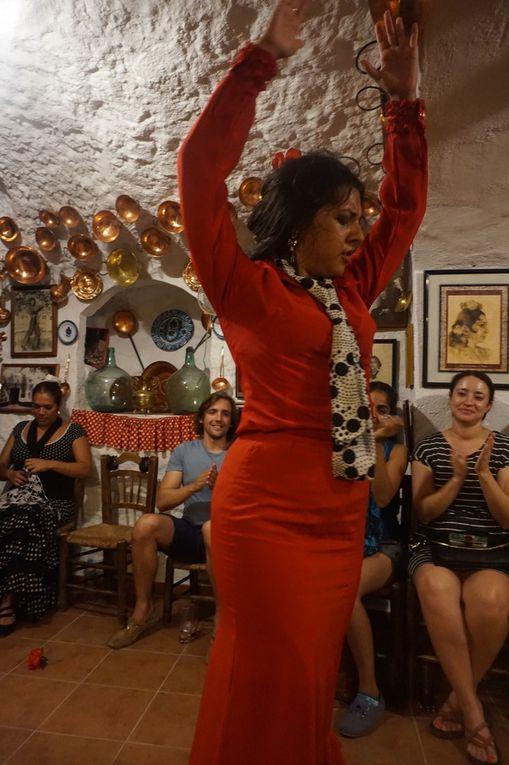 flamenco bailado y cantado por gitanos en el sacromonte de Granada