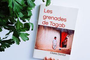 Les grenades de Tagab de Claire Dontot